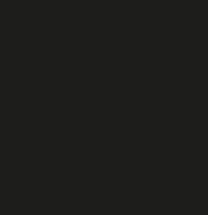 Bières artisanales françaises